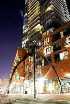Distillery District Condo - Toronto